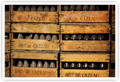 Bottles of beer aging at Brasserie de Cazeau