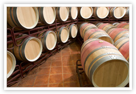 Spanish Rioja Wine Resting In Barrels During the Clarification and Aging Period